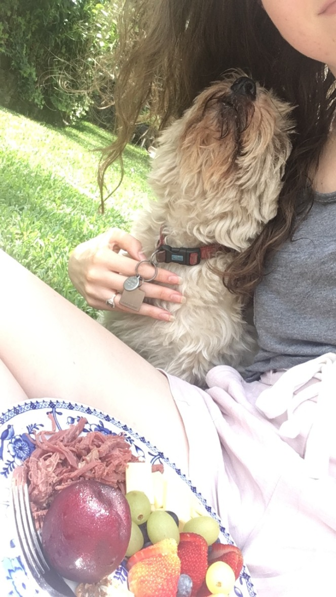 Moments of happy: Picnic with my pup