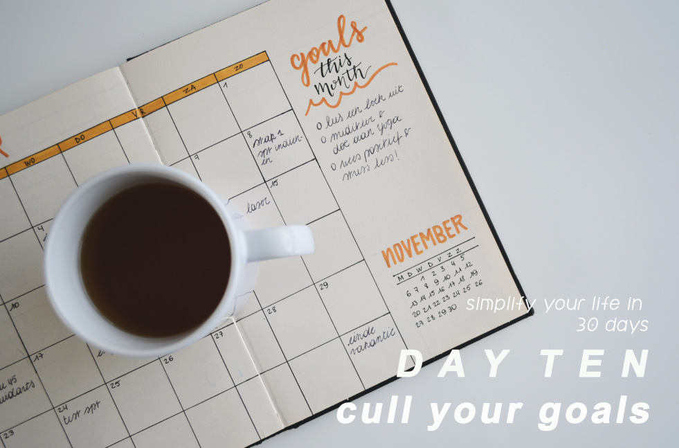 Day 10: Simplify your life - cull your goals